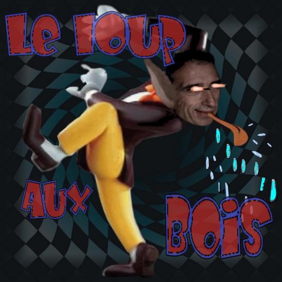 le-loup-aux-bois.jpg